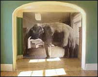 Elephant in the Room -- or, RCA's 2006 election